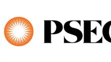 PSEG Spends Record Level in 2016 with Diverse Suppliers