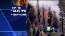 Investigators look at marijuana-grow operation as Rim Fire source