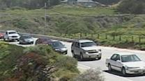 Holiday Traffic On Highway One