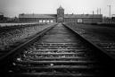 El monito de peluche que acompañó a un niño en su huida del nazismo y lo reunió con su familia 80 años después
